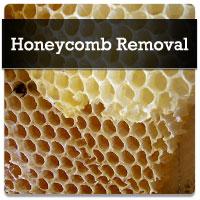 service-honeycomb